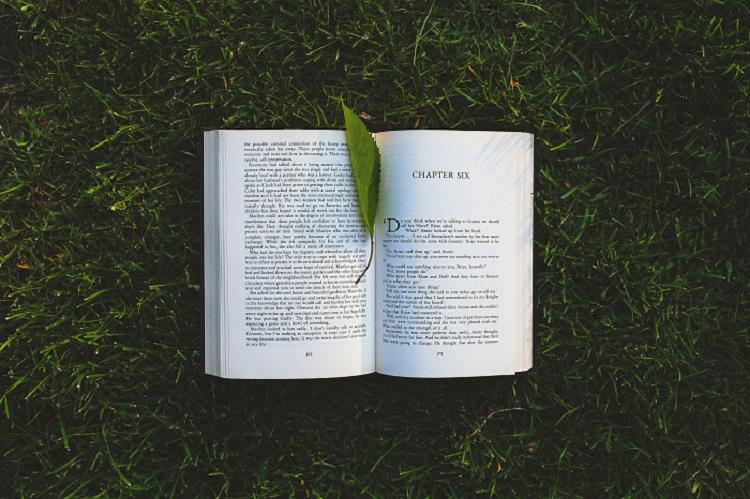 preventa de un libro