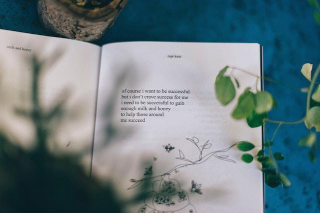poema-recursos-escritores-poesia