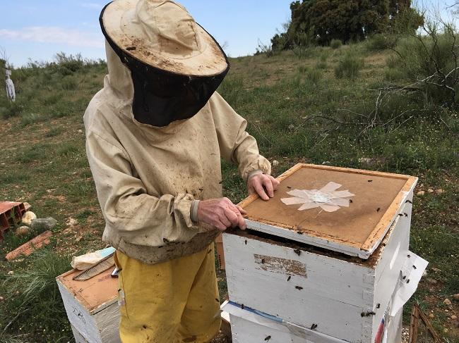 apicultura y apiterapia